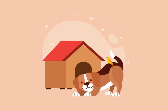 Tips Membuat Kandang Anjing yang Low Budget