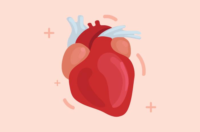 Siapa Saja yang Berisiko Terserang Jantung Koroner?