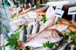 Jenis Ikan yang Baik untuk Pengidap Hipertensi
