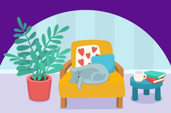 Cara Menciptakan Lingkungan yang Nyaman untuk Kucing Senior