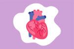 Jenis-Jenis Gangguan pada Otot Jantung yang Perlu Diwaspadai