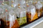 Ini Bahaya Makan-Makanan Panas yang Dibungkus Plastik
