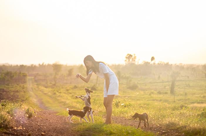 Alasan Pentingnya Menjaga Kesehatan Mental Anjing Peliharaan