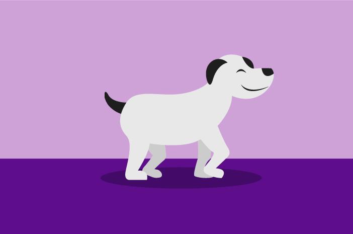 Gejala Masalah Uriner pada Anjing yang Perlu Diketahui