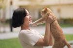 Penanganan Masalah Uriner pada Kucing Kesayangan