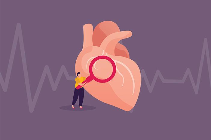Mengenal Anatomi Jantung dan Fungsinya pada Tubuh