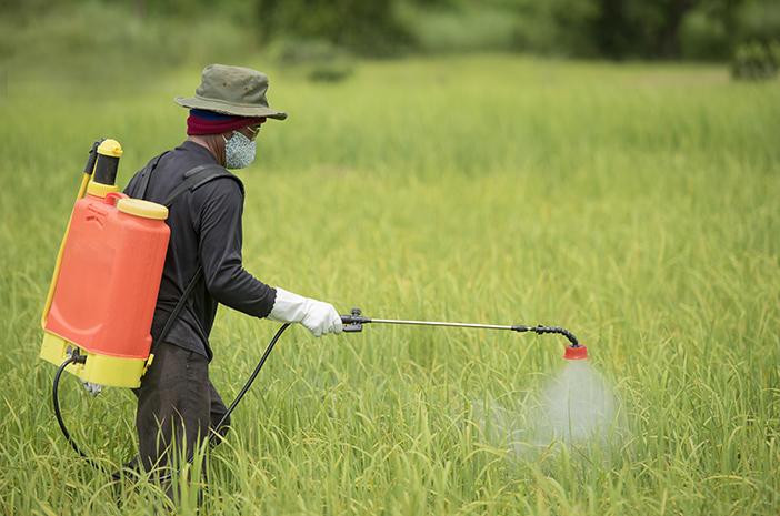 Penyemprotan Disinfektan Tidak dapat Mencegah Penyebaran COVID-19