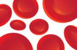 Ini 4 Macam Komponen Darah Manusia dan Fungsinya