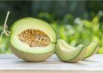 Segar dan Bergizi, 5 Manfaat Melon untuk Kesehatan Tubuh
